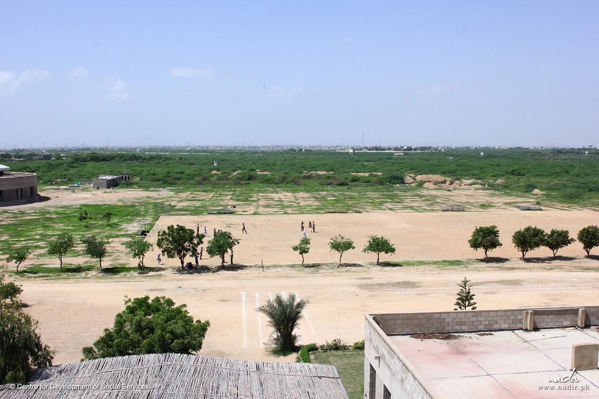 CDSS Landscape